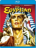 Egyptianbd