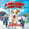Doggone_christmas
